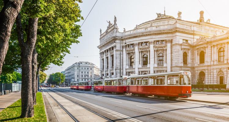 Viena 88283237