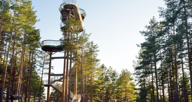 Merkinė apžvalgos bokštas 236590181